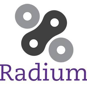 Prijsverwachting Radium RADS 2020