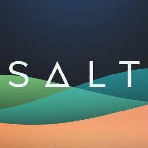 Prijsverwachting SALT SALT 2019